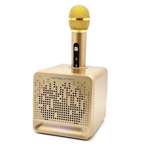 OT-ERM08 Золото Караоке система