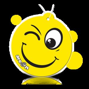 Автоароматизатор Areon Smile NO SMOKING
