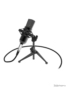 Микрофон RITMIX RDM-160 Black студийный, съемный на штативе, 3,5мм TRS+3,5мм TRS-USB2.0 адаптер